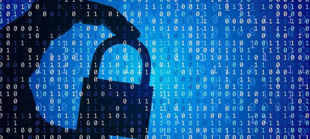 Research reveals views of students in EMEA on cybersecurity careers